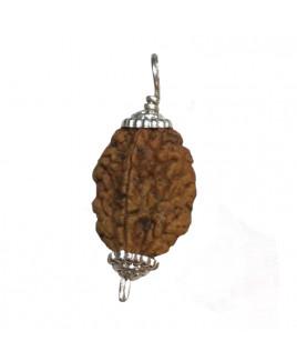 2 Mukhi Rudraksha Silver Pendant With Certificate- (RUC02-013)