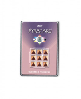 Pyracard - Success & Progress Card -(PCSP-001)
