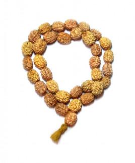 3 Mukhi Rudraksha Kantha / Kanthi Mala (MARU-008
