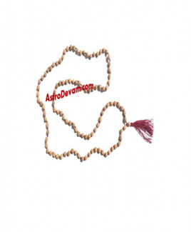 Do Mukhi (Two Face) Rudraksha Rosary / Mala - 04 mm (MARU-004)