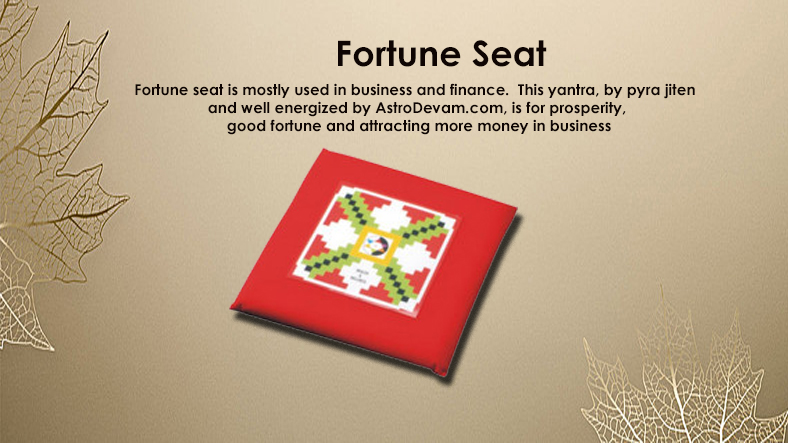 Fortune Seat Brief Overview- Uses & Benefits