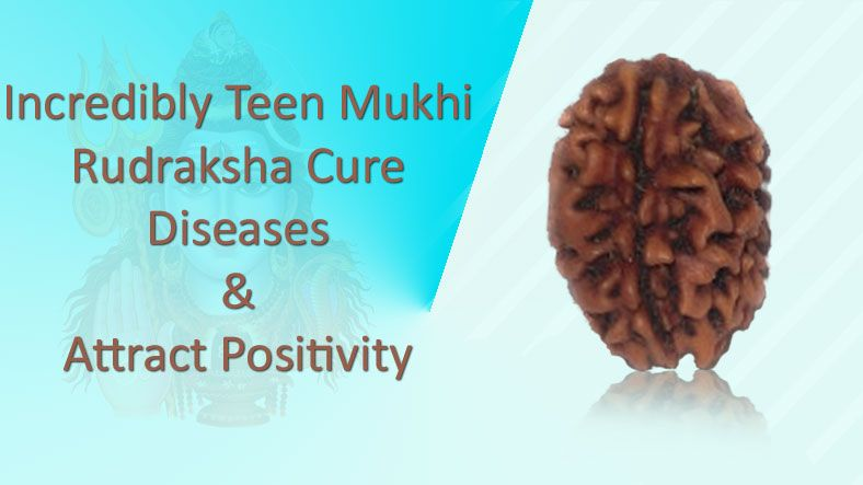 Incredibly 3 Mukhi Rudraksha Cures Diseases & Attracts Positivity