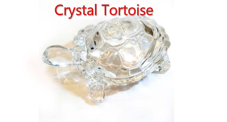importance-of-crystal-tortoise-in-feng-shui