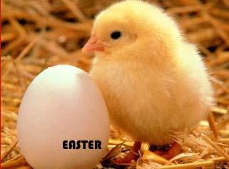 Easter Festival, Easter Christian Festival, Easter Festival Celebration.