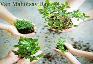 Van Mahotsava Day (Forest Day)