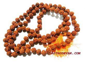 5 Mukhi Rudraksha Mala / Rosaries