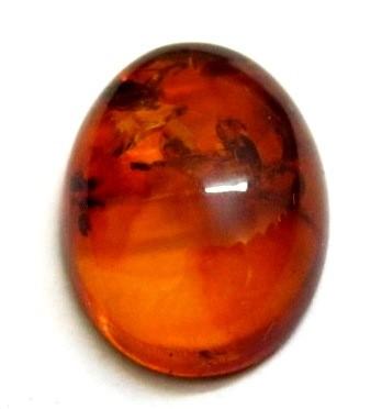 Natural Amber