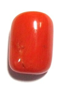 Astro Red Coral Gemstone, Rakta Prabal, Moonga