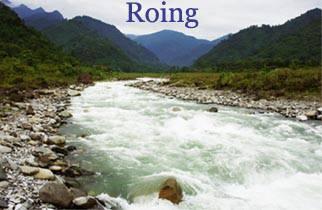 Roing
