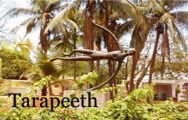 Tarapeeth