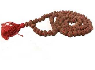8 Mukhi Rudraksha Mala / Rosaries
